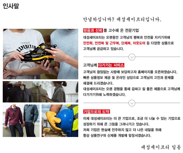 대성세이프티-회사소개.jpg